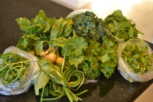 Turnips, kale, salad greens, pac choi, pea shoots, garlic scapes, broccoli raab, head lettuce