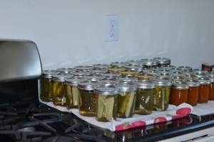 Pickles and apricot jam!
