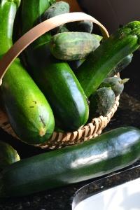 more zucchini